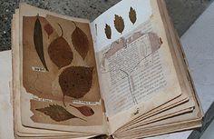Patricia Larsen: Handmade Book N° 01