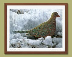 Bird Art Print Dove Poster Giclee Art Print by gretchendeahl