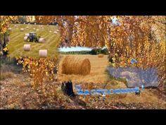 Золотая осень! Открытка