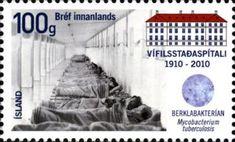 Vífilsstadhir Sanatorium, Cent.