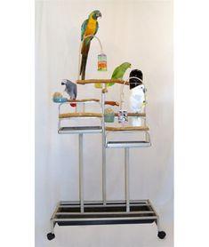 Mango Deluxe Foraging Birds Station - by BirdsComfort.com