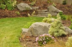 backyard landscape with large rocks - Google Search