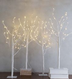 best twig christmas trees twig christmas tree christmas. Black Bedroom Furniture Sets. Home Design Ideas
