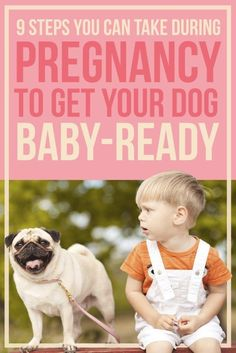 9 Steps You Can Take During Pregnancy To Get Your Dog Baby-Ready preparing for baby prepare for baby #baby #pregnancy