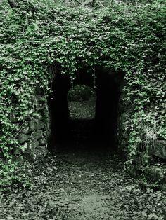 Alice in Wonderland / karen cox.  Down The Rabbit Hole