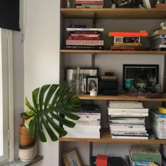 could build shelves IN living room alcove? Home Interior, Interior Decorating, Aesthetic Rooms, My New Room, House Rooms, Room Inspiration, Living Spaces, Living Room, Sweet Home