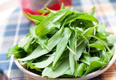 Our guide on how to forage for wild garlic in Britain, with a few key details regarding where it can be found, characteristics and recipe ideas