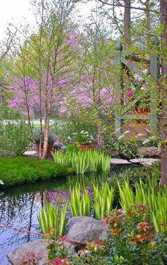 bunte garten-vegetation natürlicher teich anlegen-wasserspiele