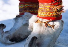 Sápmi and the Sami. The north of Sweden.  The land of the Sami, called Sápmi in their own language (parts of it also known as 'Lapland'), spans Arctic Sweden, Norway, Finland and Russia. The Sami are one of the world's indigenous people with their own language, culture and customs that differ from the societies around them. Sami hand craft