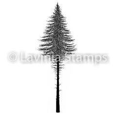 Fairy Fir Tree 2 (Large) by Lavinia Stamps, Clear Polymer Stamp, Tracey Dutton, Acrylic Stamp Tampons Transparents, Lavinia Stamps, Resin Uses, Scrapbooking, Fir Tree, Stamp Making, Card Making, Dark Places, Home And Deco