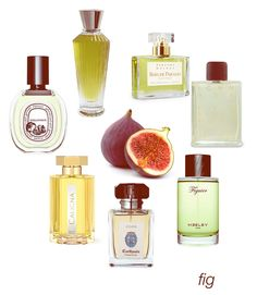Fruity, creamy, leafy - fig comes in all shapes and sizes: Ashoka, Bois de Paradis, Ichnusa, Heeley Figuier, Io Capri, Caligna, Philosykos EDT.  #niche #perfume #luckyscent