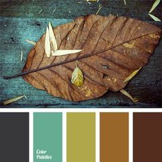This palette will look very timely in autumn, because rich celadon resonates well with reddish-brown.