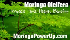 Moringa eliminates Tired Blood,Anemia, An immediate decrease in constipation (promotes regular bowel movement),Increased Energy,and a great aid in nutrition vs vitamins. 4X the Vitamin A in Carrots, 3x the Iron of Spinach, 15x the Potassium of Bananas, 2x the protein of yougurt, and much more.