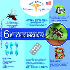 ¡Conoce y evita este virus!