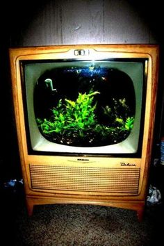 vintage fish tanks | vintage tv fish tank | Vintage Fish Tanks | Pinterest