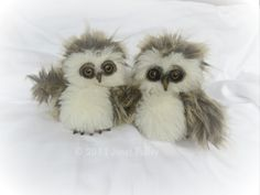 Hibou and Chouette I made these two owlets as gifts for two special people. The smaller, fatter one is Hibou ; Chouette is jus. Cute Birds, Pretty Birds, Cute Owl, Baby Owls, Cute Baby Animals, Funny Animals, Owl Babies, Owl Pictures, Cute Animal Pictures