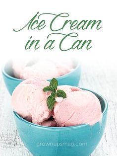 Ice Cream in a Can - Grown Ups Magazine - I scream, you scream, we all scream for homemade ice cream!