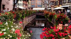 flower boxes france - Google Search