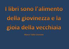 Cicerone2
