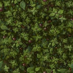 Lighting and Texture Jessica Dinh Final Texture - Groundcover: Texture Mapping, 3d Texture, Tiles Texture, Natural Texture, Green Texture, Game Textures, Textures Patterns, Terrain Texture, Hand Painted Textures
