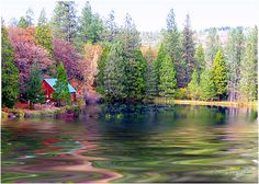 Autumn Lake In The Woods Painted