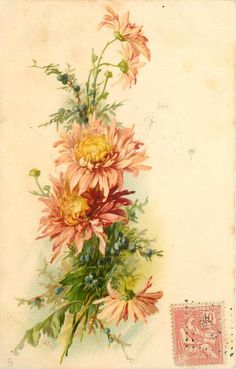 1904, bronze chrysanthemums