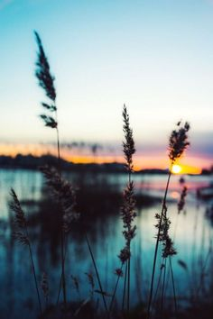 ideas hintergrundbilder nature nacht for 2019 Beautiful World, Beautiful Places, Beautiful Sunset, Beautiful Scenery, Beautiful Moments, Landscape Photography, Art Photography, Fashion Photography, Photography Lighting