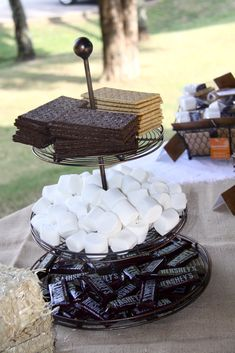 camping party- smores buffet