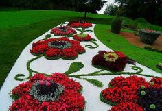 A front garden can be said as a magical garden as this is the path which guests take before they approach you. You can use your front garden to your Topiary Garden, Garden Art, Garden Design, Rocks Garden, Amazing Gardens, Beautiful Gardens, Beautiful Flowers, Beautiful Scenery, Small Flower Gardens