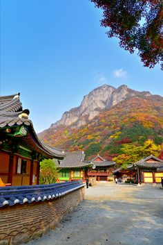 Autumn temple, South Korea   대한민국 여행 허브 시티맵