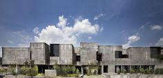 日建設計チーム山梨による、多孔質にすることで一体感を持ちながら内外の連続感を持つ桐朋学園大学の調布キャンパス