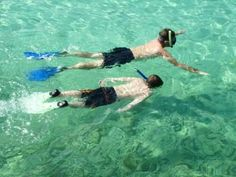 Snorkeling Nearest to St. Pete Beach, Florida
