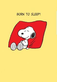 Snoopy - Born to sleep.I thought Snoopy was a Beagle.Not a Greyhound ! Peanuts Cartoon, Peanuts Snoopy, Snoopy Cartoon, Snoopy Comics, Snoopy Quotes, Peanuts Quotes, Joe Cool, Charlie Brown And Snoopy, Snoopy And Woodstock
