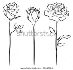 Three Roses in hand drawn style - stock vector