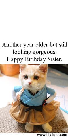 happy birthday sister & happy birthday wishes ` happy birthday ` happy birthday wishes for a friend ` happy birthday funny ` happy birthday wishes for him ` happy birthday sister ` happy birthday greetings ` happy birthday quotes Birthday Caption For Sister, Sister Birthday Quotes Funny, Happy Birthday Love Quotes, Happy Birthday Wishes For A Friend, Birthday Wishes Funny, Birthday Wishes For Boyfriend, Happy Birthday Quotes, Sister Quotes, Happy Birthday Funny Images