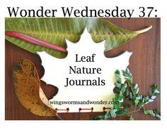 Wonder Wednesday 37: Leaf Nature Journals