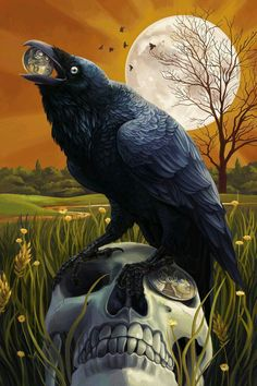 Baltimore, Maryland - Raven and Skull - Lantern Press Artwork Giclee Art Print, Gallery Framed, Espresso Wood), Multi Crow Art, Raven Art, Corvo Tattoo, Rabe Tattoo, Quoth The Raven, The Ancient Magus, Jackdaw, Arte Obscura, Crows Ravens