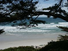 View from the Scenic Ave. Walk down onto the gorgeous Carmel, white sand beach. Shot by Shay Davidson