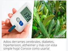 Foto: Esta simple hoja...  Aquí el post  http://thatnoticia.com/adios-derrames-cerebrales-diabetes-hipertension-alzheimer-y-mas-con-esta-simple-hoja-conoce-como-usarla-17610