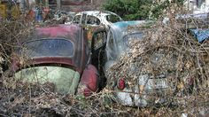 UT, Centerville, Rusting Classic Cars - found behind an old abandoned building that sadly no longer exists.