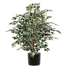 Vickerman 4' Artificial Variegated Extra Full set in Black Pot ** You can get more details by clicking on the image.