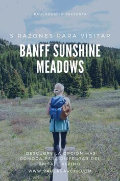 ¡Si estás preparando un viaje a las Montañas Rocosas Canadienses, asegúrate que Banff Sunshine Meadows está en tu itinerario! #BanffNationalPark #MontañasRocosas #SunshineMeadows Banff Canada, Sunshine, Movies, Poster, Banff National Park, Lakes, Rocky Mountains, Hiking Trails, National Parks