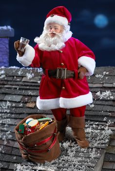 COCA-COLA® Santa. I have this. I definately needed him as part of my collection
