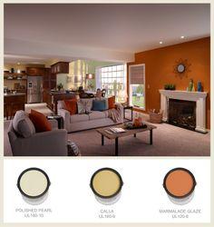 Burnt Orange Wall Behr Paint In Caramelized Orange For