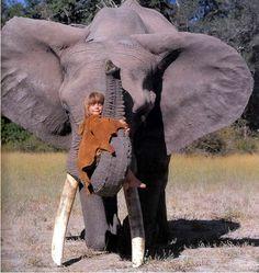 本名は、 ティッピ・ベンジャミン・オカンティ・ドュグレ ティッピは、ヒッチコックの「鳥」に出演し、ライオンをペットとして飼育していた女優ティッピ・ヘドレンさんから命名。オカンティは、アフリカのオヴァンボ族の言葉で「マングース」という意味。ティッピは、ナミビアで生まれ、幼少時代をアフリカの大地で育ちました。 両親は、野生動物の写真家でした。そのため、ティッピは幼少の頃から、野生動物たちと共に成長していきました。大きなゾウと遊び、大きなカエルをぬいぐるみのように抱っこする。 野生のアフリカゾウのアブちゃんとは、とても仲良し。