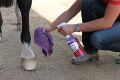 Spot clean your horse!   http://www.proequinegrooms.com/index.php/tips/grooming/dealing-with-manure-stains-on-your-horse/