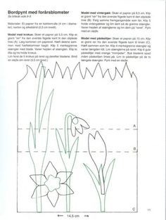 Grass And Flowers Colouring Pages