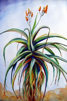 Karin Shelton, a fine artist from Santa Barbara, California paints in watercolor, gouache and oil. Downtown Santa Barbara, Art Music, Art Projects, Project Ideas, Large Prints, Watercolor Paper, Aloe, Giclee Print, Fine Art