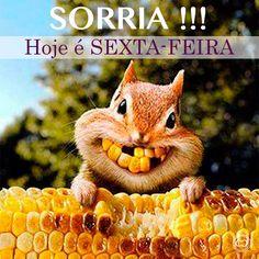 Bem vinda sexta-feira, estávamos ansiosas lhe esperando !!! uhuuuu  www.charmedalu.com.br