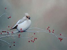 realistic-bird-oil-painting-